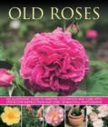 Old Fashioned Roses - Book