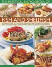 Practical Encyclopedia of Fish and Shellfish - Book