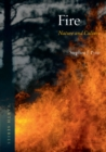 Fire : Nature and Culture - eBook