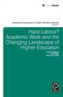 Hard Labour? Academic Work and the Changing Landscape of Higher Education - eBook
