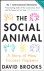 The Social Animal : A Story of How Success Happens - eBook
