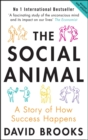 The Social Animal : A Story of How Success Happens - Book
