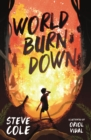 World Burn Down - Book
