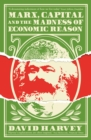Marx, Capital and the Madness of Economic Reason - Book