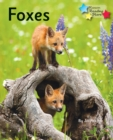 Foxes : Phonics Phase 5 - Book