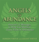 Angels of Abundance - Book