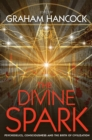 The Divine Spark : Psychedelics, Consciousness and the Birth of Civilization - eBook