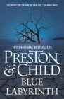 Blue Labyrinth - eBook