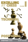 Excelling at Chess Volume 1 : Technical and Positional Chess - Book
