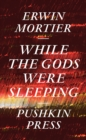 While the Gods Were Sleeping - eBook
