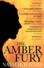 The Amber Fury - eBook