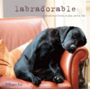 Labradorable : Labradors at Home, at Large, and at Play - Book