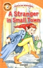 A Stranger in Small Town - Book