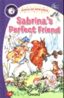 Sabrina's Perfect Friend - Book