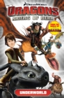 Dreamworks' Dragons : Riders of Berk v.6 - Book