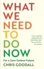 What We Need to Do Now : For a Zero Carbon Future - eBook