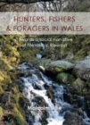 Hunters, Fishers and Foragers in Wales : Towards a Social Narrative of Mesolithic Lifeways - eBook