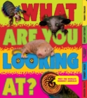 What Are You Looking At? - Book