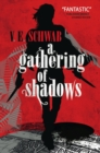 A Gathering of Shadows - Book
