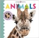 Touch & Feel Friends Animals - Book