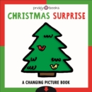 Christmas Surprise - Book
