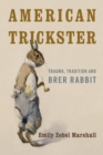 American Trickster : Trauma, Tradition and Brer Rabbit - eBook