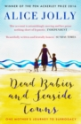 Dead Babies and Seaside Towns - Book