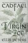 The Virgin In The Ice - eBook