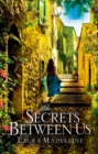 The Secrets Between Us - Book