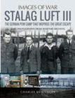 Stalag Luft III : Rare Photographs from Wartime Archives - Book