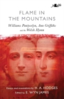 Flame in the Mountains - eBook