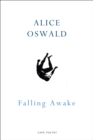 Falling Awake - eBook