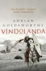 Vindolanda : An authentic and action-packed historical adventure set in Roman Britain - eBook