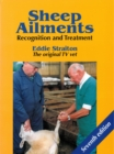 Sheep Ailments : Recognition and Treatment - eBook
