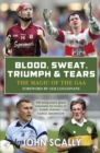 Blood, Sweat, Triumph and Tears : Tales from the GAA - eBook