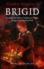 Pagan Portals - Brigid : Meeting The Celtic Goddess Of Poetry, Forge, And Healing Well - eBook