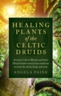 Healing Plants of the Celtic Druids : Ancient Celts in Britain and their Druid healers used plant medicine to treat the mind, body and soul - Book
