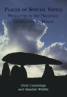 Places of Special Virtue : Megaliths in the Neolithic landscapes of Wales - eBook