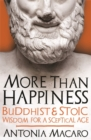 More Than Happiness : Buddhist and Stoic Wisdom for a Sceptical Age - Book