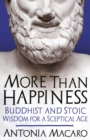 More Than Happiness : Buddhist and Stoic Wisdom for a Sceptical Age - eBook