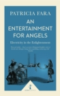 An Entertainment for Angels (Icon Science) : Electricity in the Enlightenment - eBook