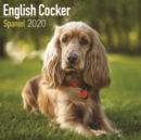 English Cocker Spaniel Calendar 2020 - Book