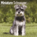 Miniature Schnauzer 2021 Wall Calendar - Book