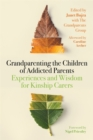 Grandparenting the Children of Addicted Parents : Experiences and Wisdom for Kinship Carers - Book