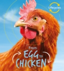 Lifecycles: Egg to Chicken - Book