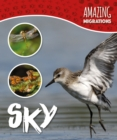 Amazing Migrations: Sky - Book