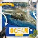 Ocean Food Webs - Book
