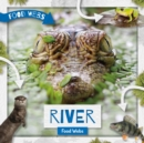 River Food Webs - Book