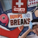 Bumps and Breaks - Book