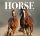 Horse : Magnificent, Playful, Loyal - Book